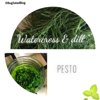 Watercress & Dill Pesto