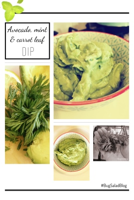 Avocado, Mint & Carrot Leaf Dip